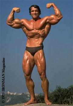 Arnoldin Kultainen
